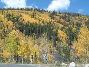 Moraine on Bear Lake Road
